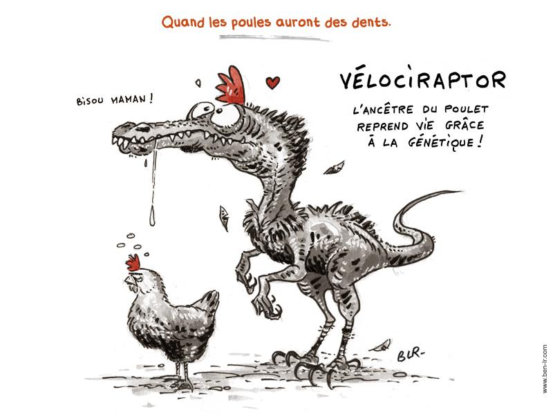 http://www.ben-lr.com/images/e/exp/Expr-Quand_Poules_Auront_Dents_800pt.jpg