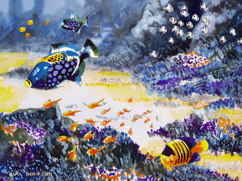 Baliste Rochefordiere Plongée sous-marine